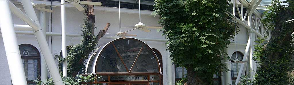 Half Day Jewish Half Day Sultanahmet Tour The Synagogue Visit Those Are The Synagogues That We
